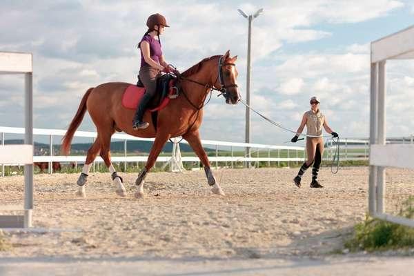 Верховая езда: отдых и тренировка в одном флаконе
