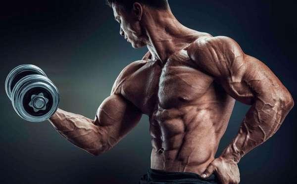 Качаем мышцы, бережём суставы