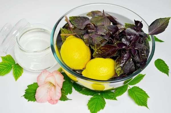 Напиток из базилика с лимоном. Фото