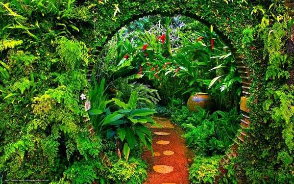 Индолы: вся мощь растений