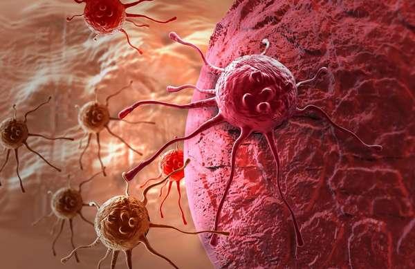 10 мифов о раке