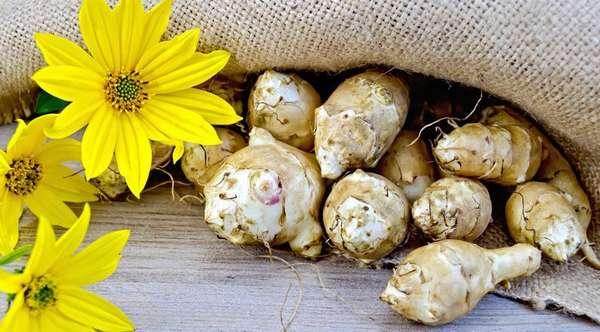 Чем полезна льняная каша с топинамбуром, стевией: рецепт