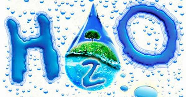 Для чего организму вода