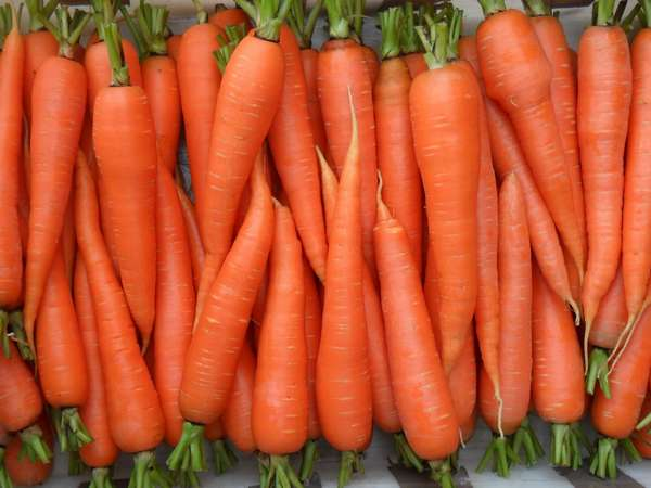 Морковка с приставкой супер