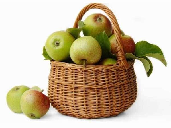 Худеем на яблоках Фото