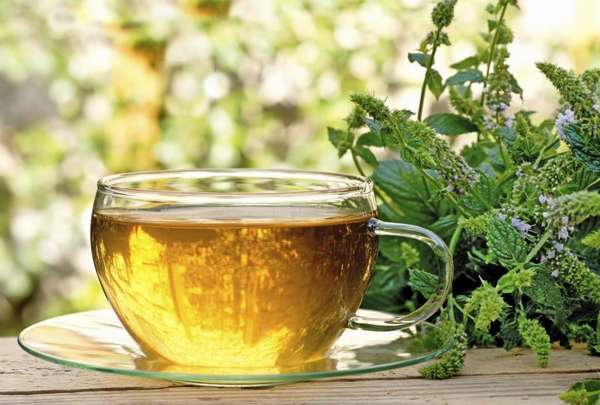 Фото: Травяной чай для снижения аппетита