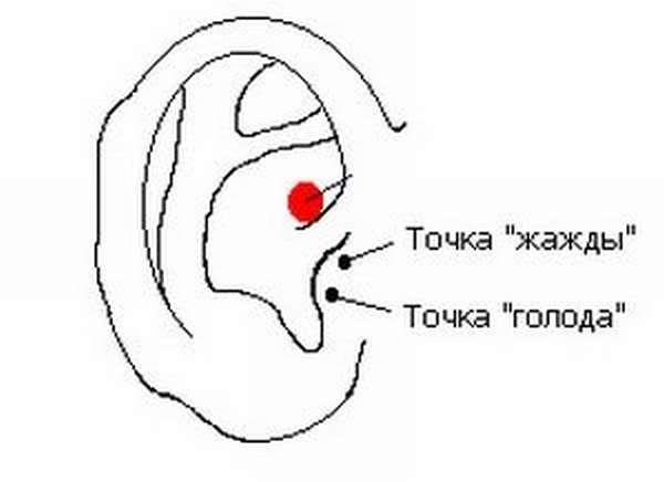 Волшебная точка на ухе