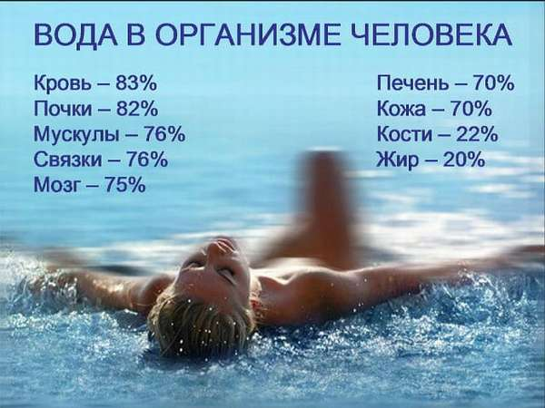 Роль воды Фото