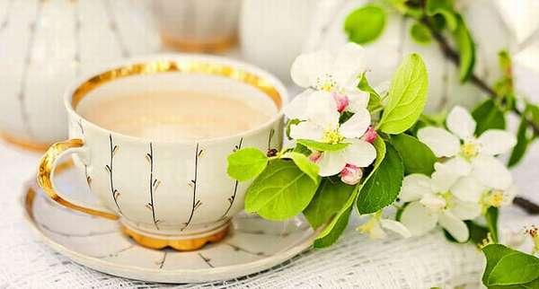 Рецепт молокочая для похудения Фото