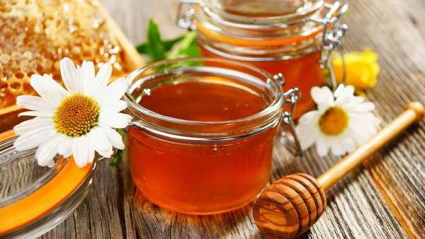 Мед, полезные свойства и противопоказания Фото