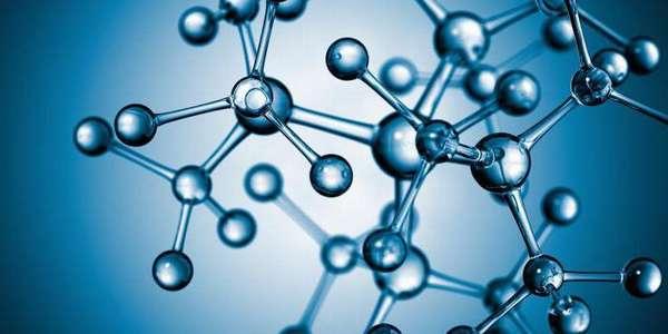 Гистохимические методы выявления аминокислот в тканях