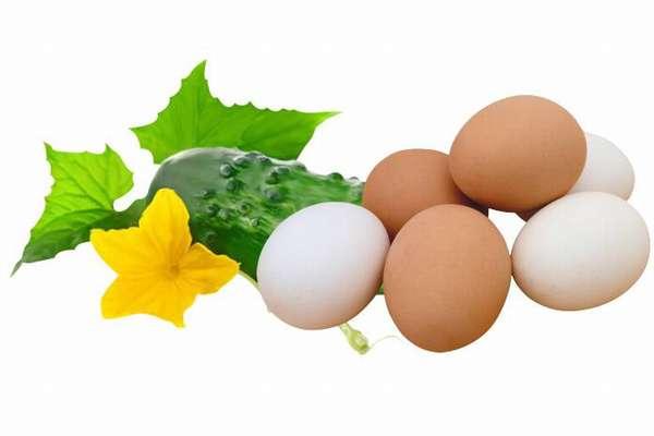 Огурец и яйцо