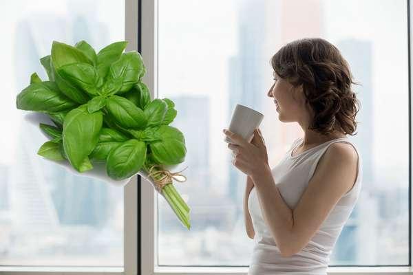 Девушка пьет чай с майорном