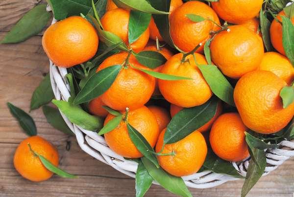 Польза мандаринов Фото