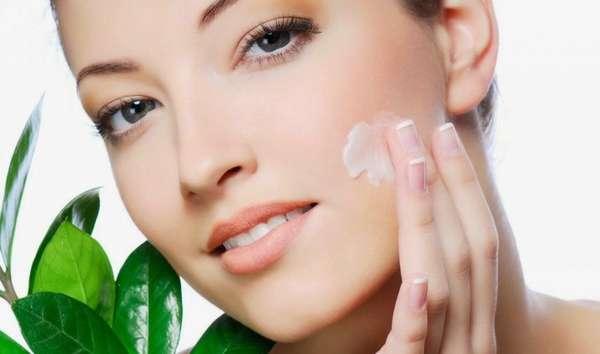 Фото: Брусничный лист для кожи лица