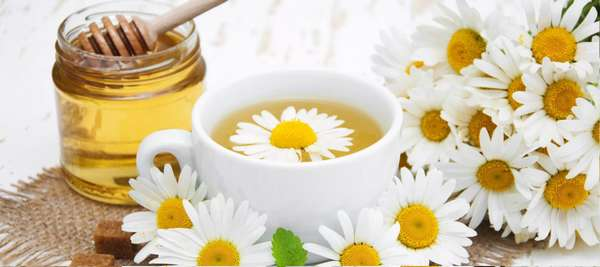 можно ли пить ромашку как чай с медом