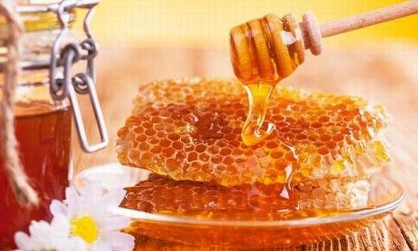 Какой мед полезнее сорта меда и их свойства, правила покупки и употребления