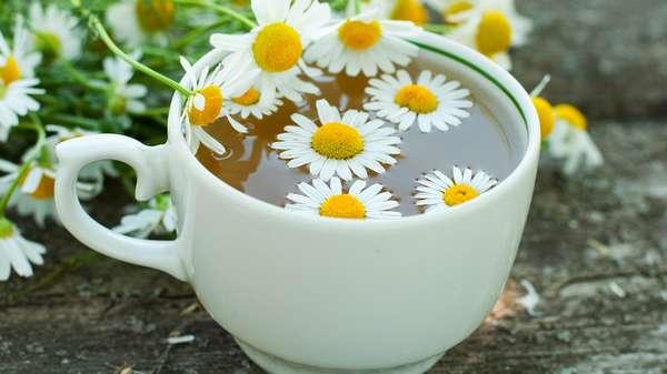 Чай с ромашкой Фото