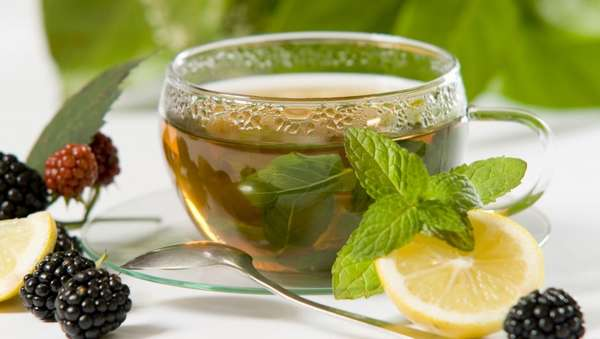 Чай из стевии Фото
