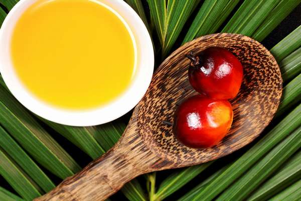 Чем отличается кокосовое масло от пальмового