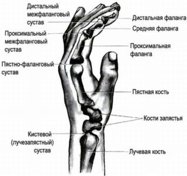 Вывих кисти руки: симптомы и лечение