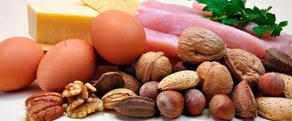 Роль белков для организма