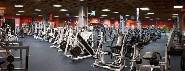 Виды тренинга в тренажерном зале