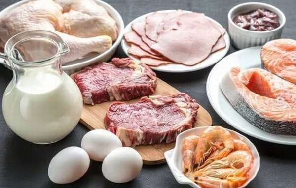 Правила приготовления и употребления белковой пищи