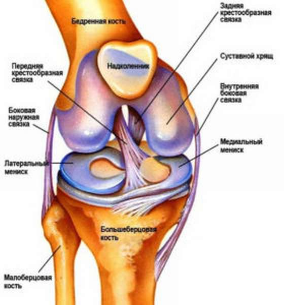 Пластика связок коленного сустава реабилитация