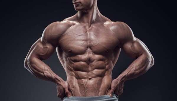 Протеин польза и вред для мужчин