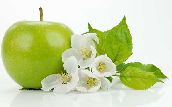 Яблочная диета для похудения Зеленое яблоко