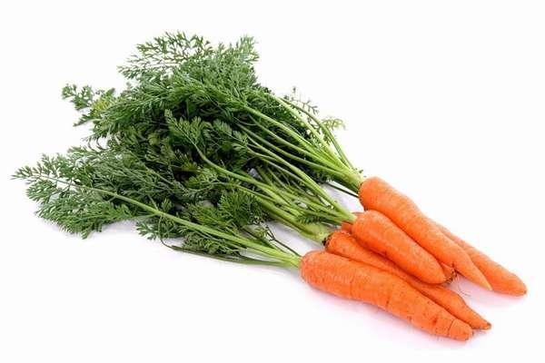 Польза морковной ботвы Фото