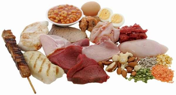 Полезность белковой продукции для организма